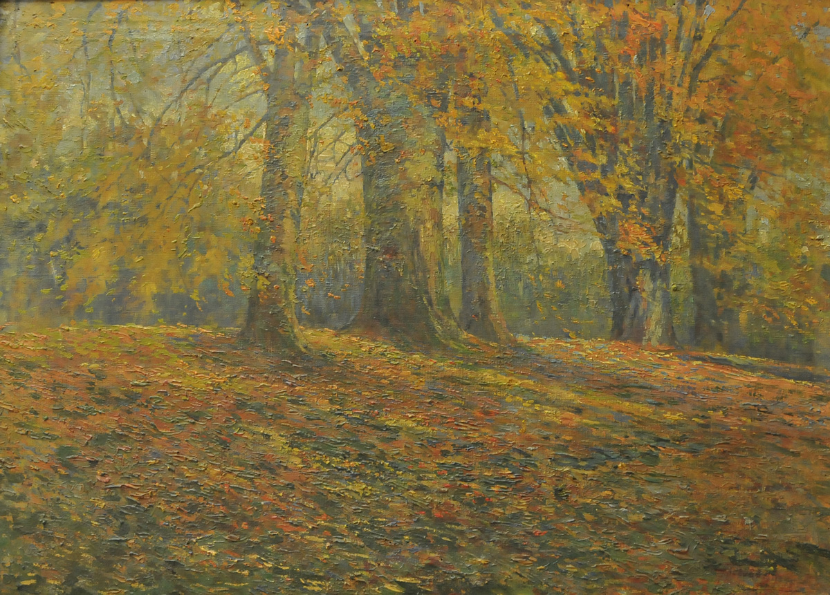 Landscape in autumn forest